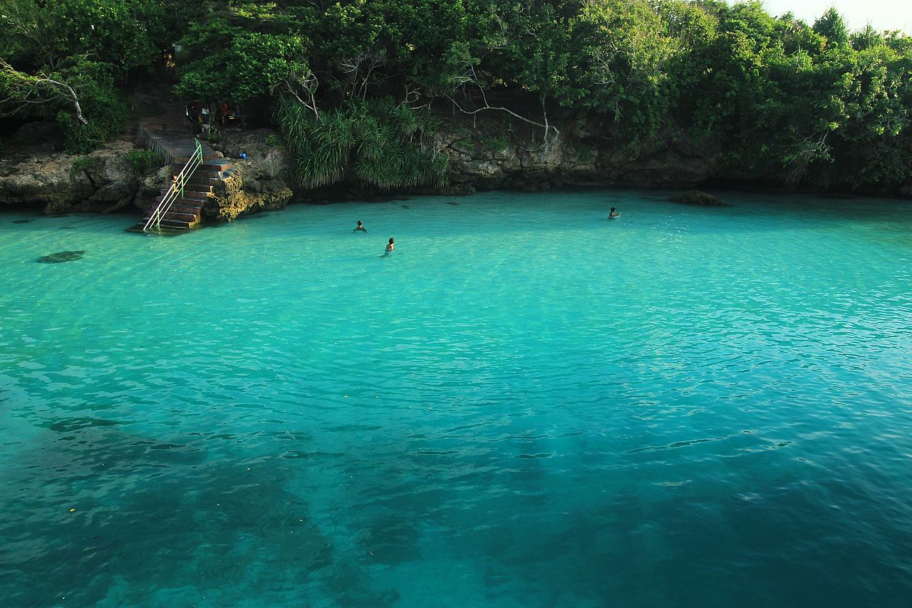 people swimming in natural green pool