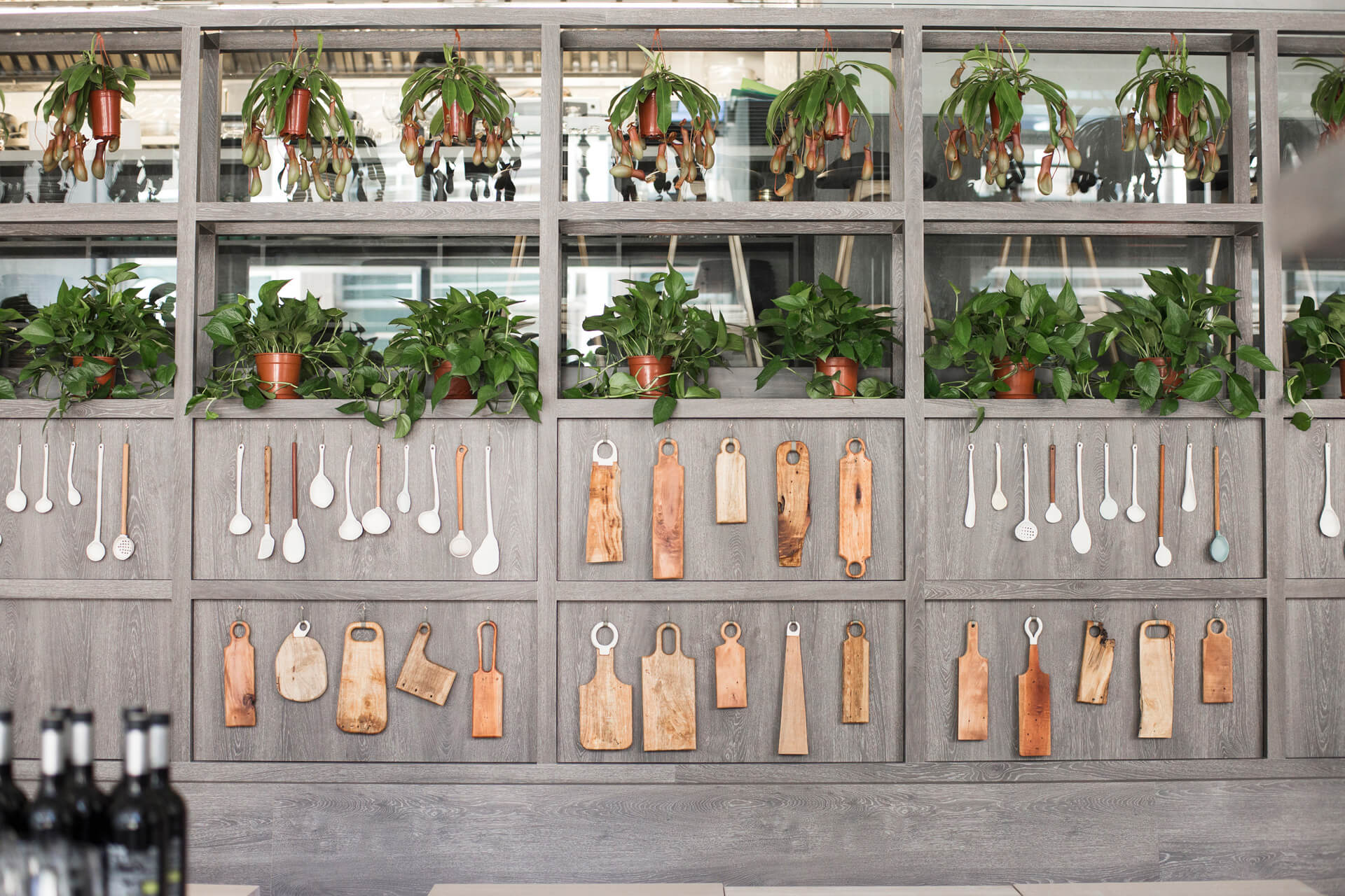 wooden utensils hanging on wall, plants