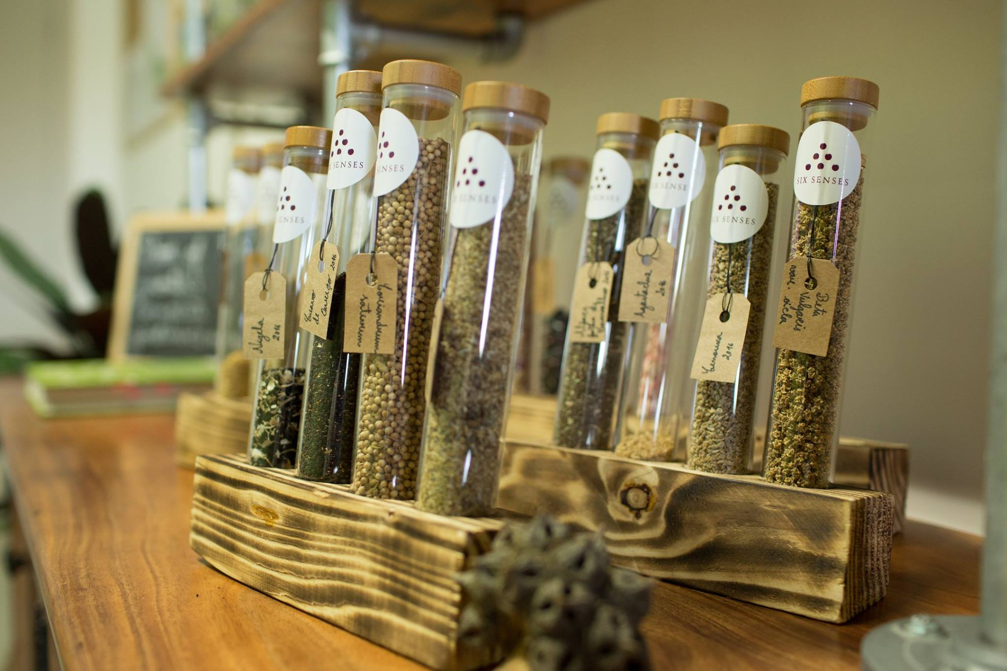test tubes filled with seeds