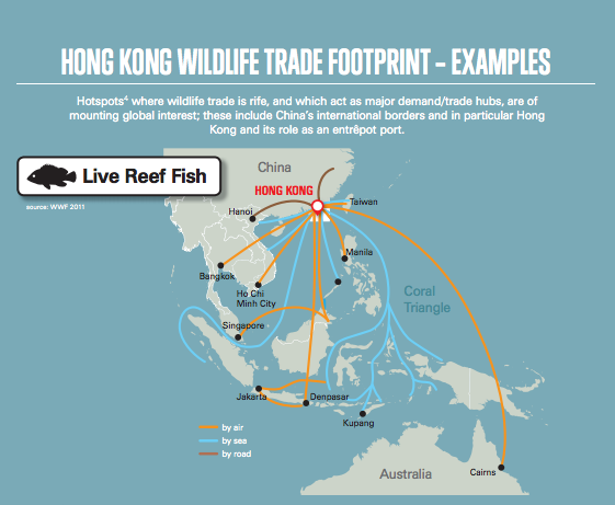 map showing the distribution of reef fish from Hong Kong