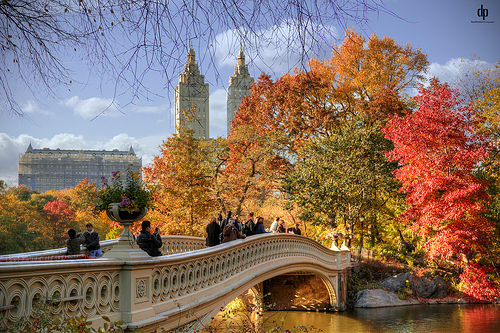 Bow Bridge in Central Park with colourful autumn leaves