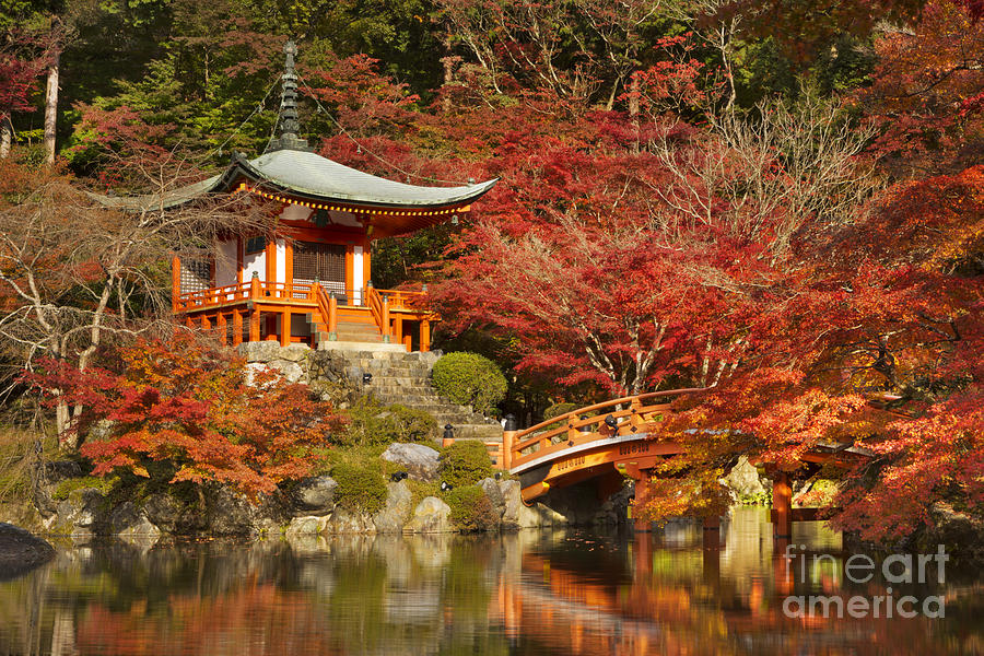 Japanese temple surrounded by orange autumn leaves