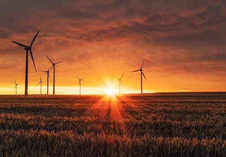 windfarms at sunset