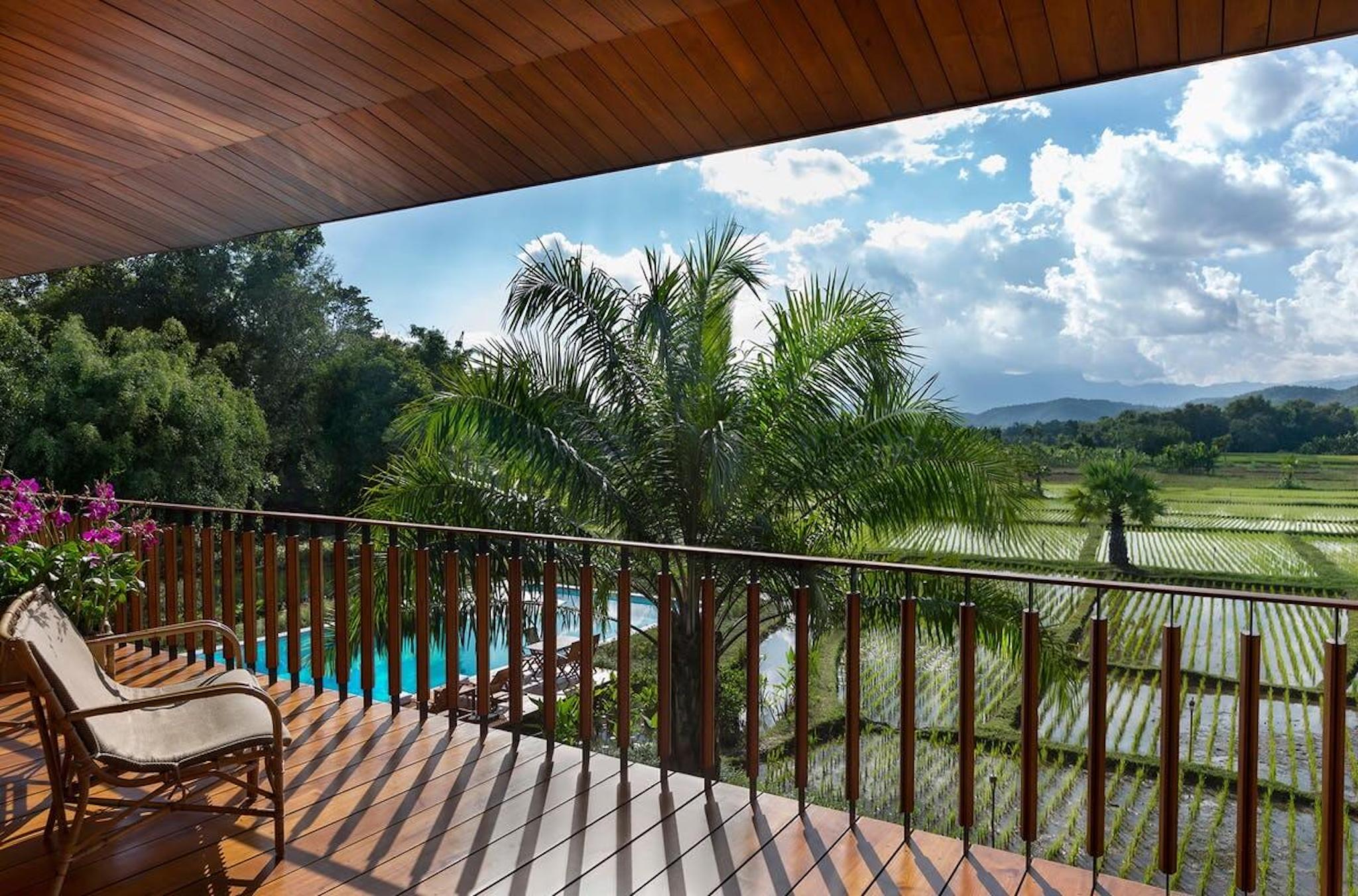 balcony overlooking palm trees and rice paddies